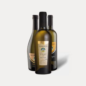 Confezione mista di 3 bottiglie (1 Bianco Passito, 1 Frizzante, 1 Bianco Fermo), La Cappuccina